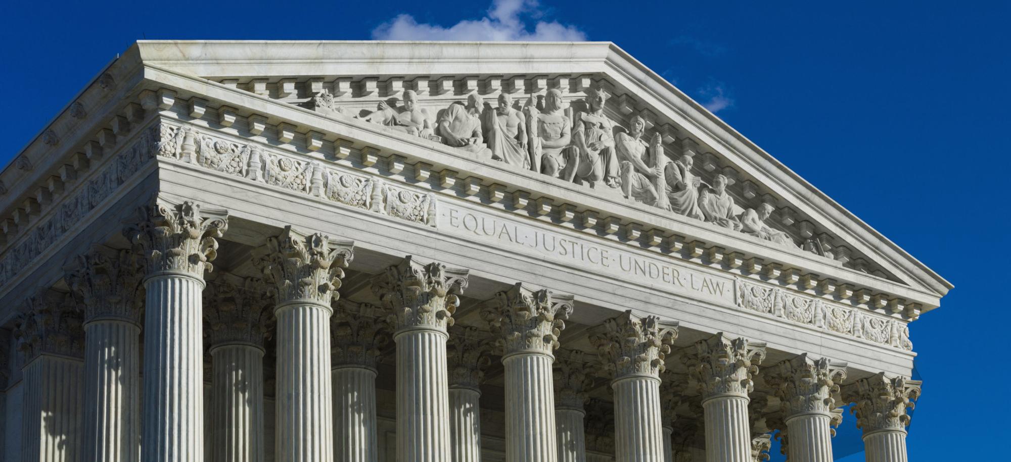 Immigrant Defense Project Impact Litigation